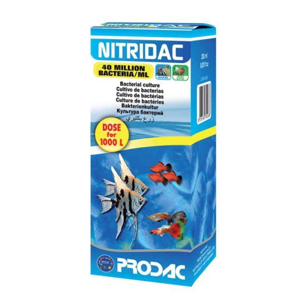 בקטריה NITRIDAC PRODAC