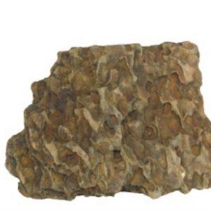 """סלעי דרקון 15-25 ס""""מ, המחיר מתייחס ל 1 ק""""ג"""