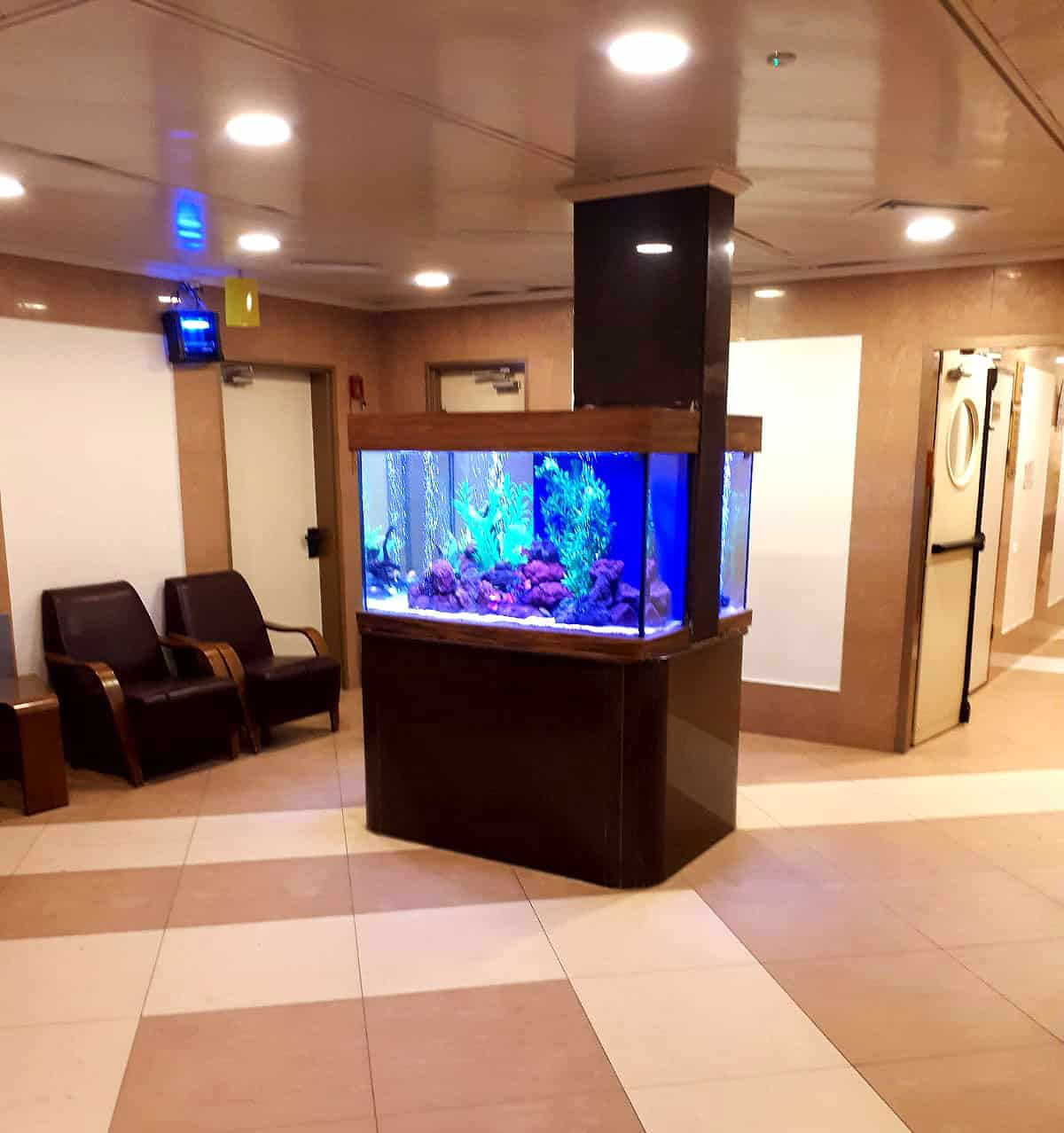 aquarium21