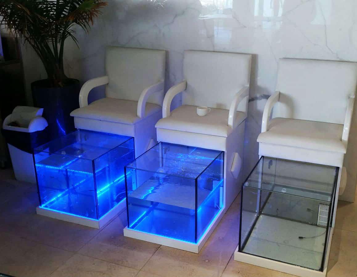 aquarium56