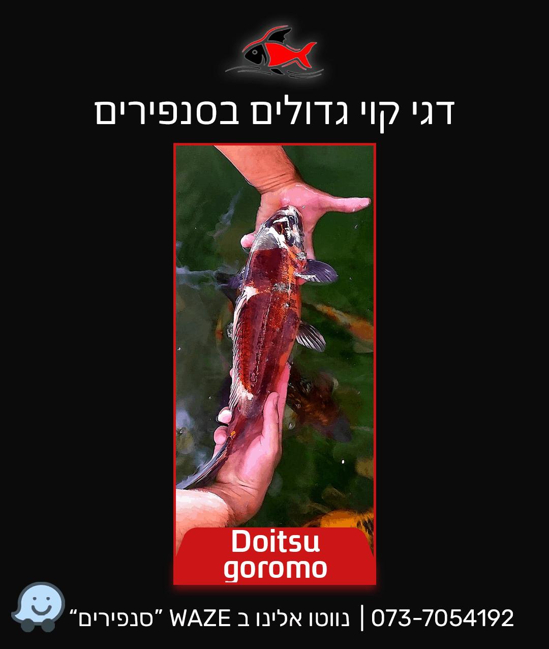 doitsu-goromo
