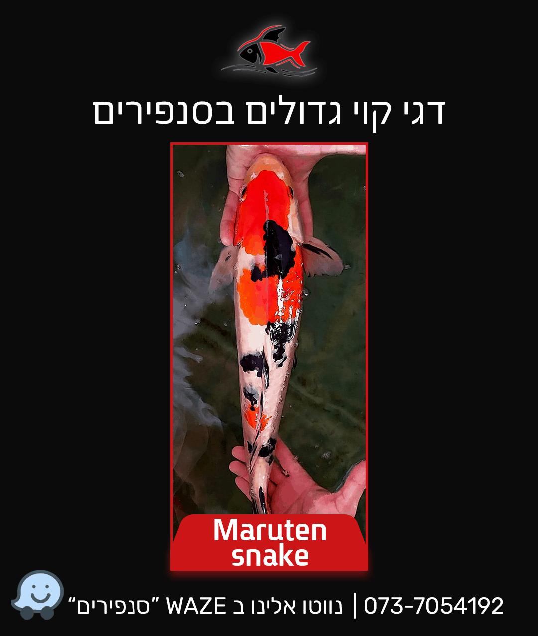 maruten-snake